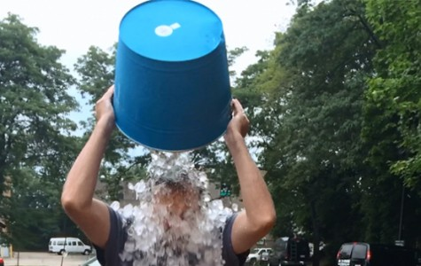 The ALS Challenge: A Viral Virus