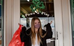 Small Business Spotlight - Paws n' Play